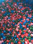 Bulk case of gourmet jellybeans 25 pound box ...